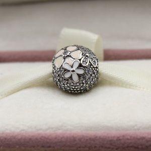 Pandora poetic blooms 792084cz